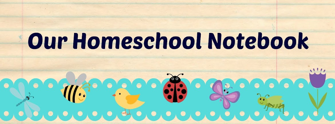 Our homeschool notebook