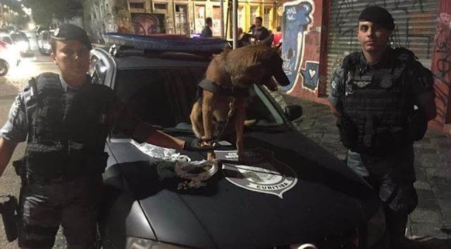 Cão farejador da Guarda Municipal de Curitiba (PR) encontra drogas na Trajano Reis