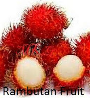The rambutan fruit, compare it with lychee and longan, it looks different.