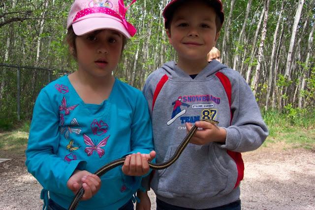 Pengunjung taman ular
