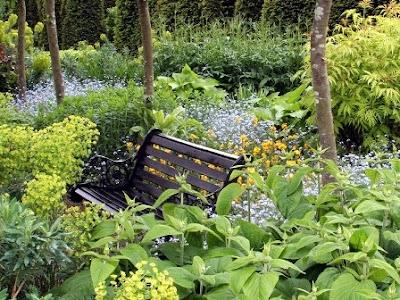 Садовый ландшафт