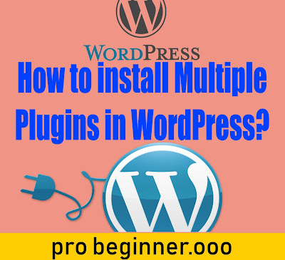 How to install Multiple Plugins in WordPress?