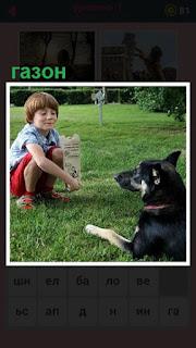 на газоне мальчик показывает собаке объявление на листке