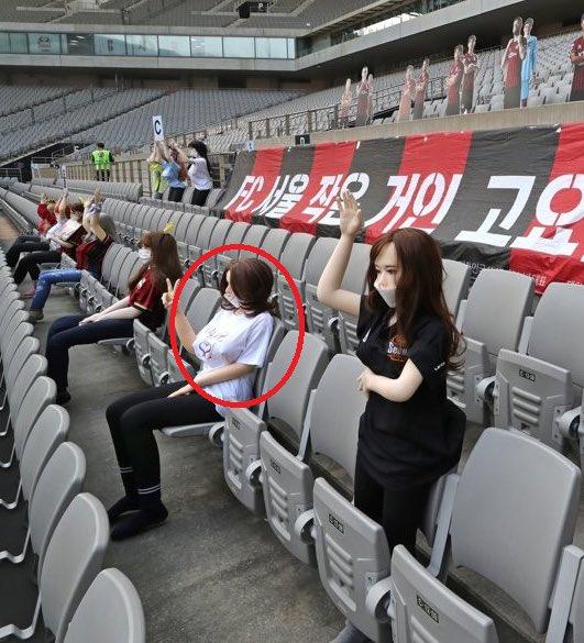 K-League fines FC Seoul over 'sex doll fans' fiasco
