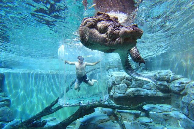 Những điểm du lịch nguy hiểm nhưng hấp dẫn du khách nhất hành tinh