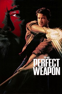 Watch The Perfect Weapon Online Free in HD