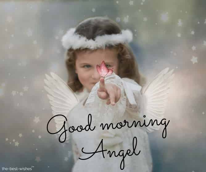beautiful good morning angel images