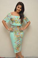 Nikki Galrani in Cute Dress Dress At Marakathamani Success Meet ~  Exclusive 004.JPG