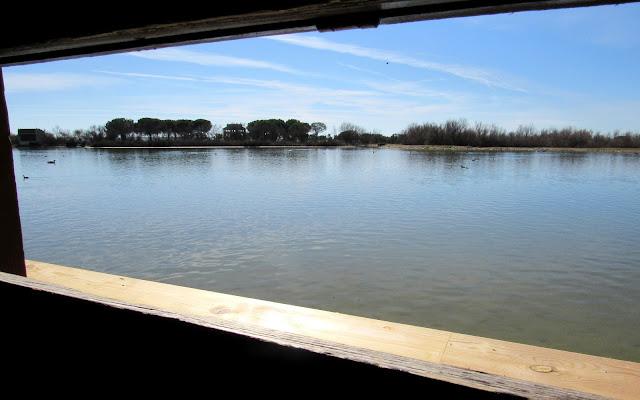Observatorios en las lagunas de Villafáfila