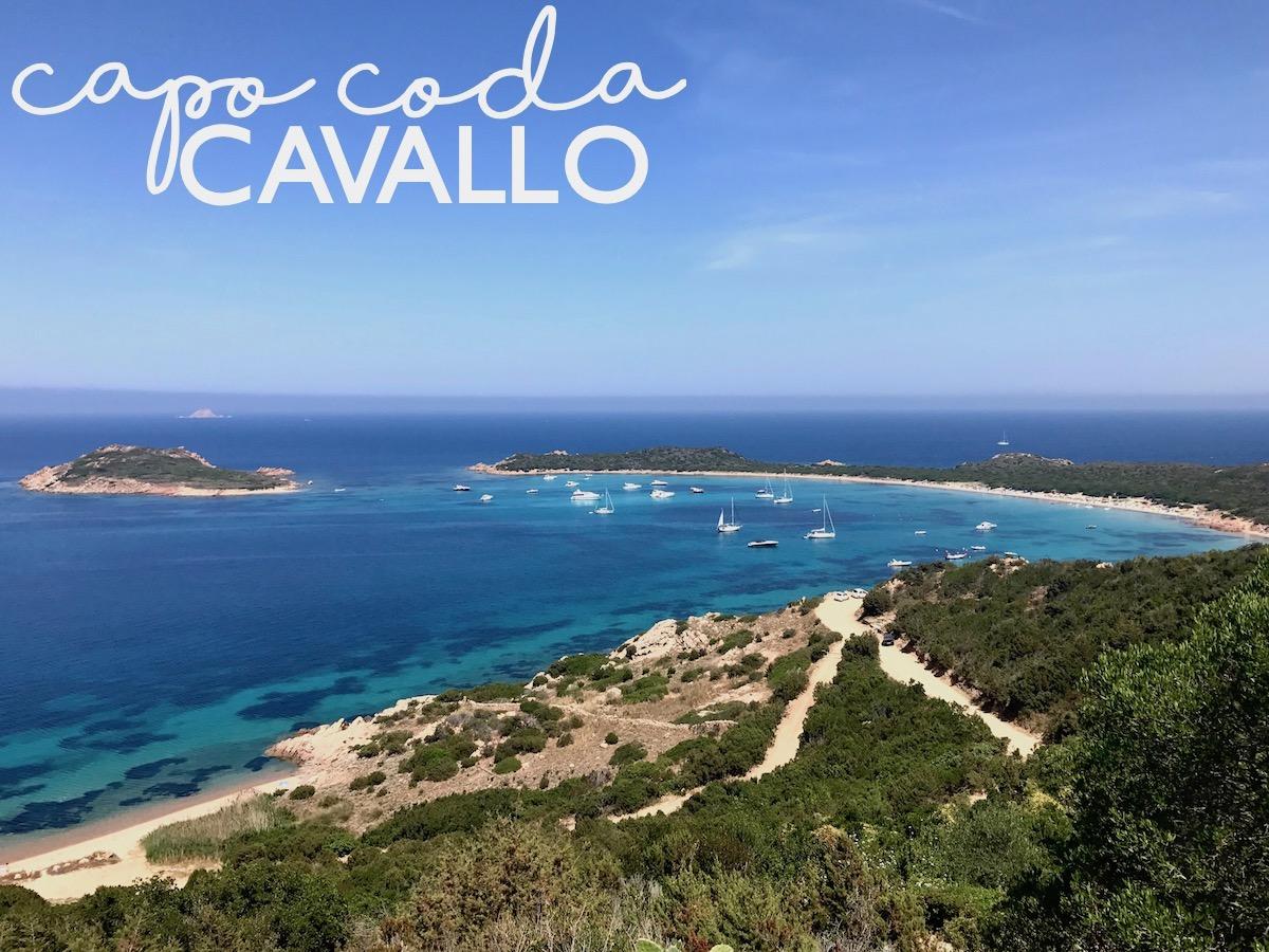 Sardinia Best Beaches Die schönsten Strände Sardiniens auf: http://www.theblondelion.com/2017/08/schoenste-straende-sardiniens.html Tipps Reiseblog Travel Diary Reiseführer Reisetipps Capo Coda Cavallo