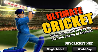 Online Ultimate cricket game