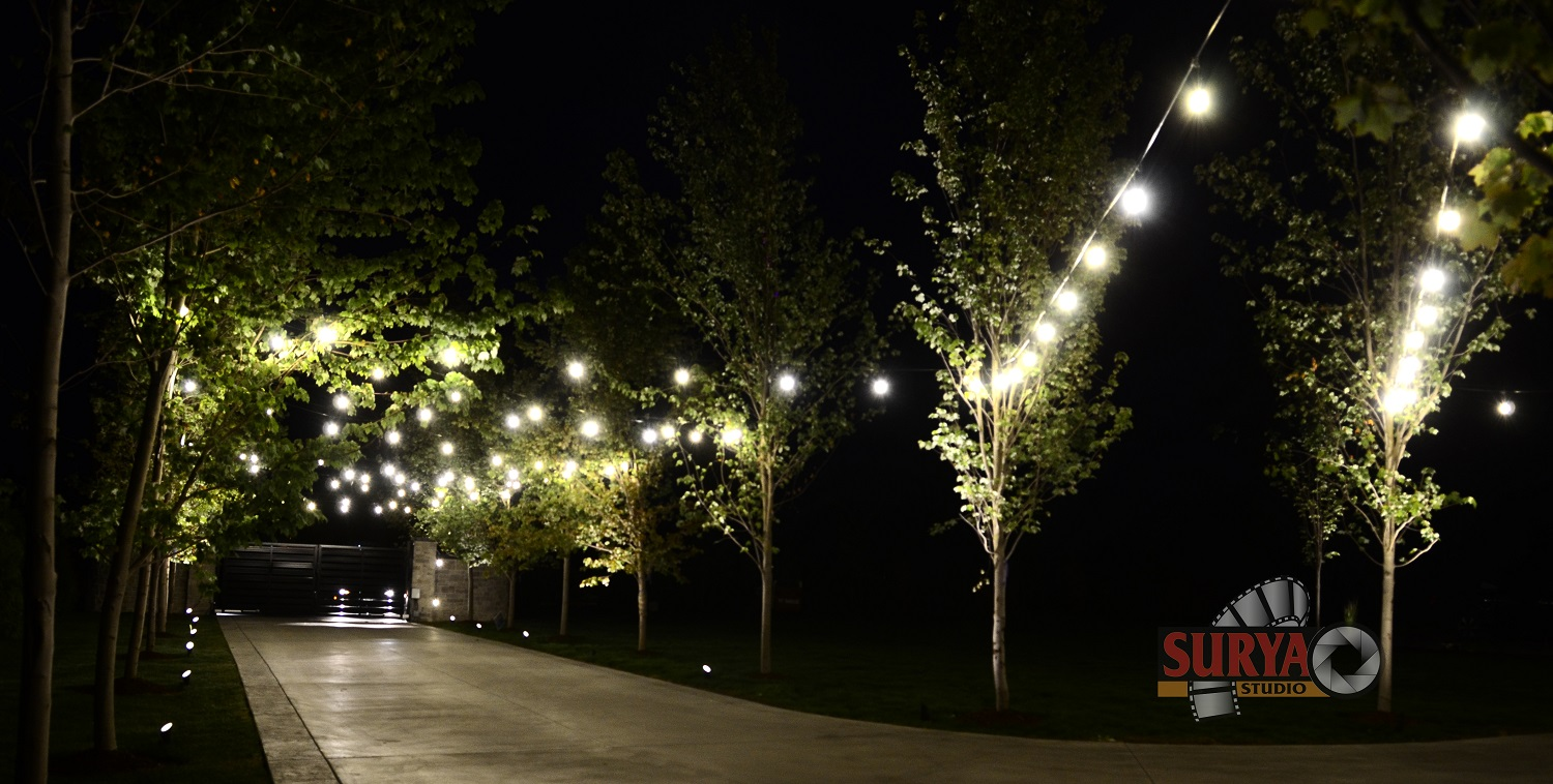 Christmas Led Lights Canada Christmas Led Lighting In Vancouver Event Lighting Services In
