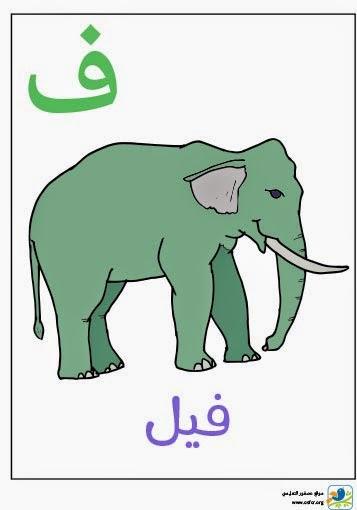 ملصق تعليمي للأطفال لتعليم حروف الهجاء (حرف الفاء)