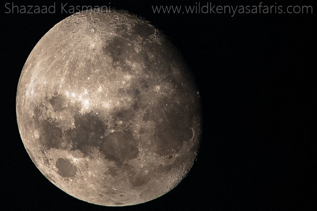 The Moon, The Moon in Kenya, Wild Kenya Safaris, Wildlife Diaries, Shazaad Kasmani, www.wildkenyasafaris.com, Moon Photography Kenya, Mombasa Safaris, Diani Safaris,