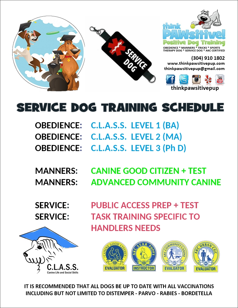 think Pawsitive Pup! - POSITIVE DOG TRAINING IN SOUTHERN WV / VA