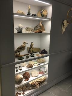 ピサ植物園の植物博物館