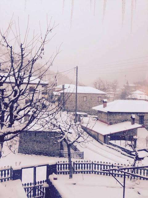 """Ήπειρος: Στην """"Κατάψυξη"""" Και Η Ηπειρος! Στους -11°C Το Θερμόμετρο Στη Βωβούσα!!"""