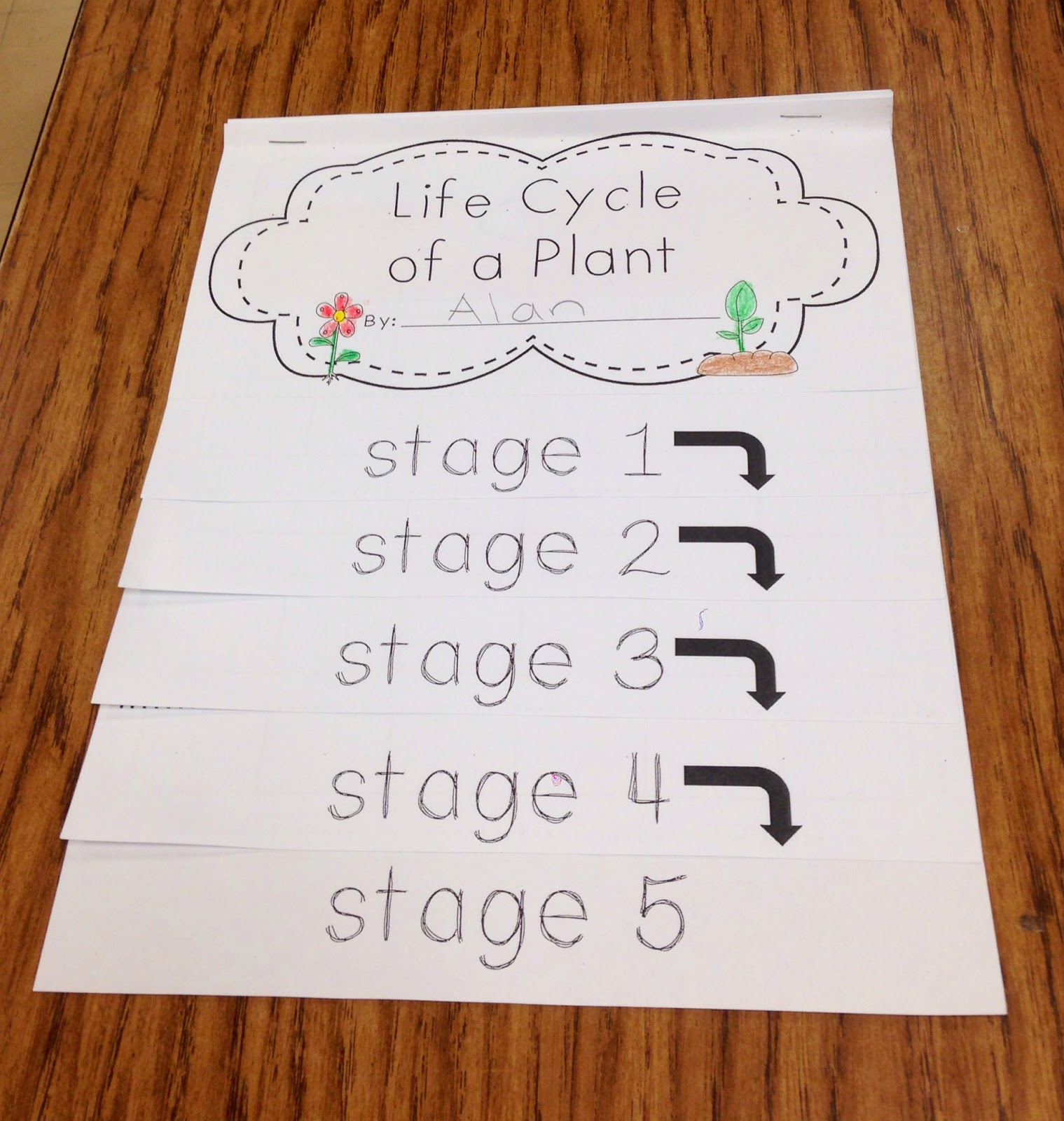 A Spoonful Of Learning Spring Amp Plants