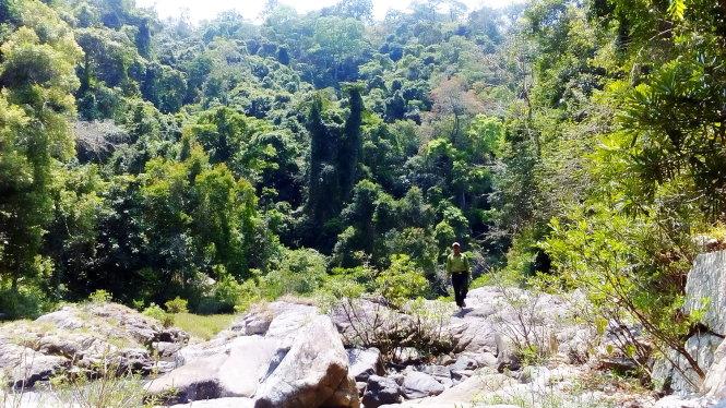 Gia Lai: Xin xây thủy điện trong khu bảo tồn