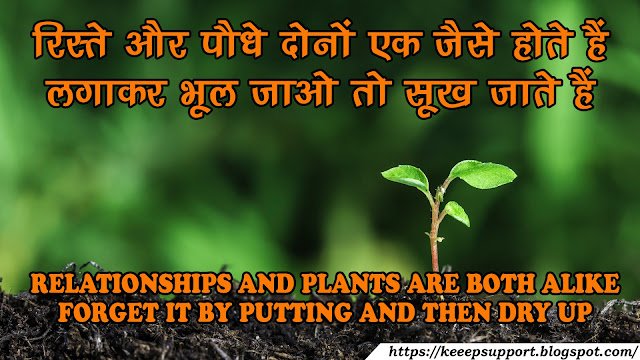 RELATIONSHIP AND PLANTS ARE BOTH ALIKE...