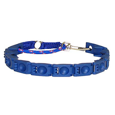 dog collars online india