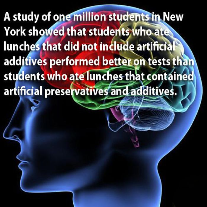 Science Facts Brain: 18 Amazing Facts About The Human Brains (18 Pics)