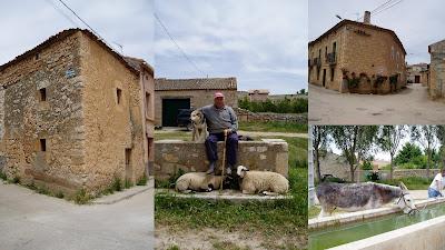casa vieja_pastor con perro y 2 corderos_casa de piedra_joven dando agua al burro en el pilón