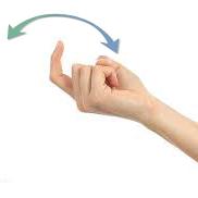 Signal rukom za gluve ljubimce, dođi