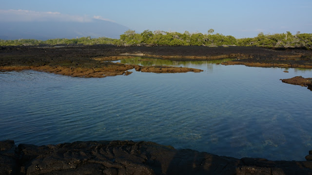 Espinoza Point