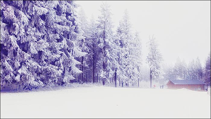 Winterberg, Skilanglauf