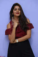 Pavani Gangireddy in Cute Black Skirt Maroon Top at 9 Movie Teaser Launch 5th May 2017  Exclusive 088.JPG