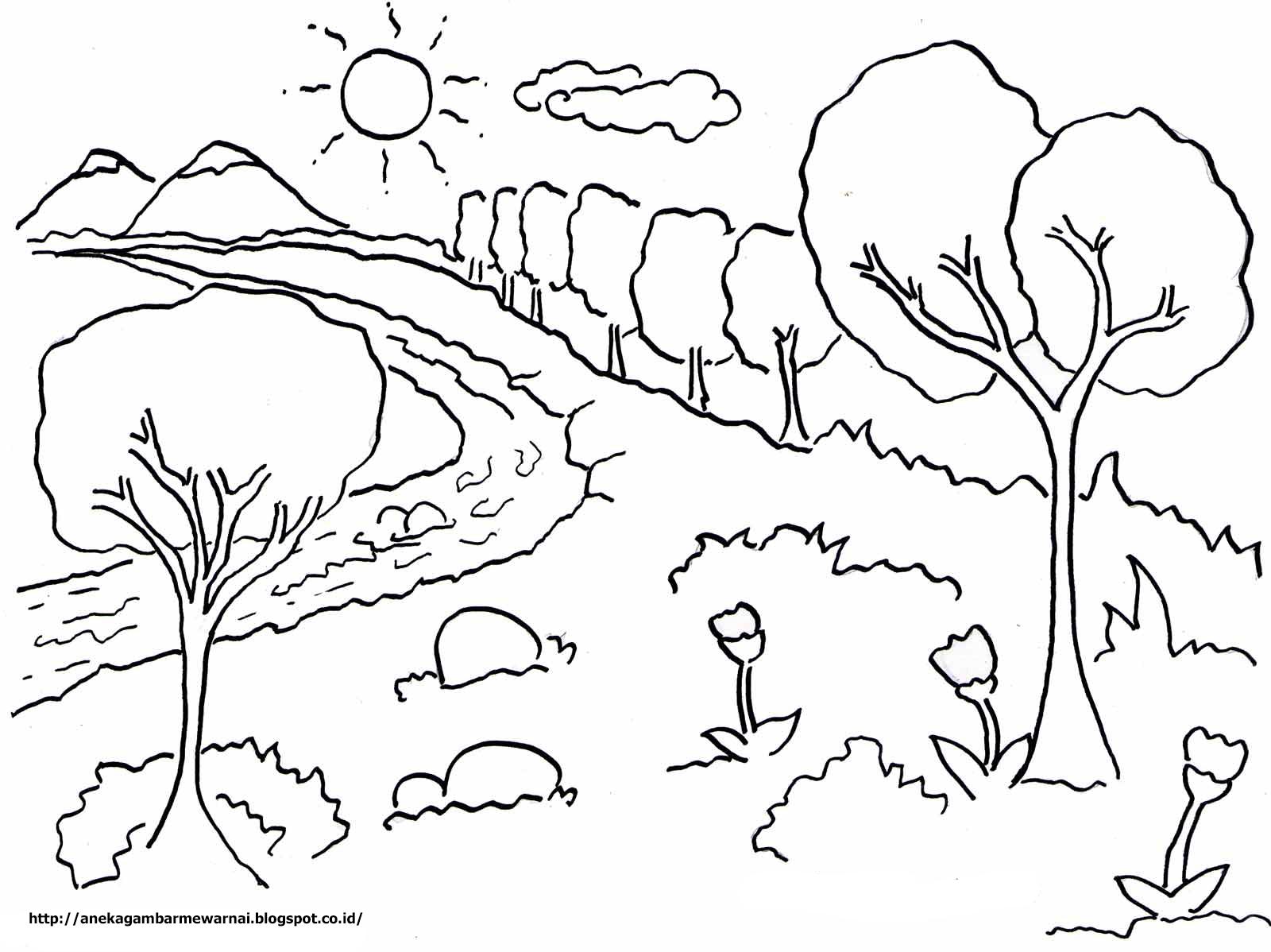 Aneka Gambar Mewarnai Gambar Mewarnai Pemandangan Langit Cerah Untuk Anak Paud Dan Tk