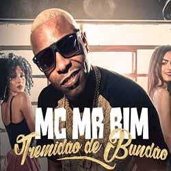 Baixar Tremidão De Bundão - MC Mr. Bim MP3