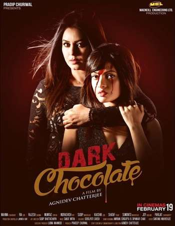 Poster Of Dark Chocolate 2016 Hindi 300MB HDRip 480p ESubs Watch Online Free Download downloadhub.net