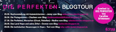 https://ruby-celtic-testet.blogspot.com/2017/08/blogtour-die-perfekten-von-caroline-brinkmann.html