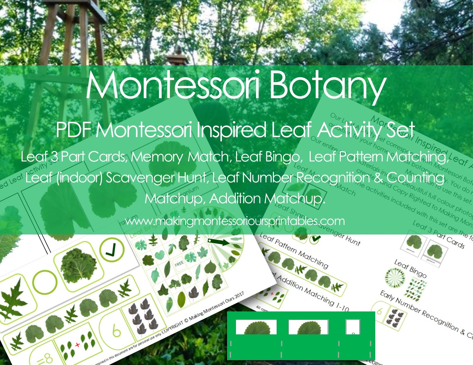 playing with leaves montessori botany activities at home