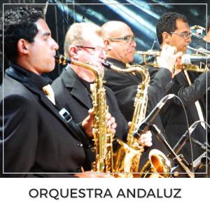 http://www.milvezessim.com.br/p/orquestraandaluz.html