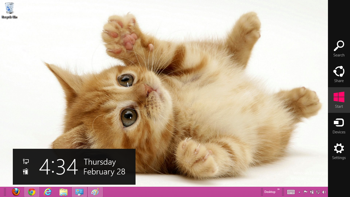 Cute Cats And Kittens Wallpaper Hd Cat Themes Cute Cat Themes For Windows 7 Free Download Fernmetpaten