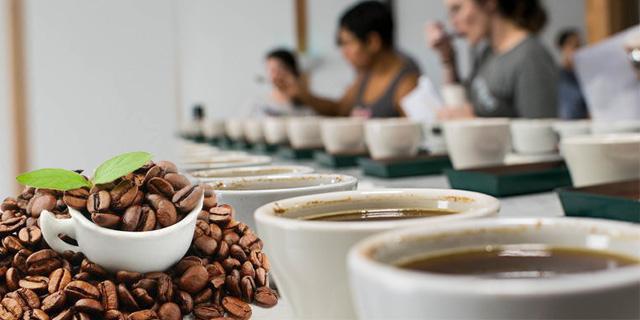 kahve tadimi yapimi, kahve asidite tadımı, Www.KahveKafe.Net