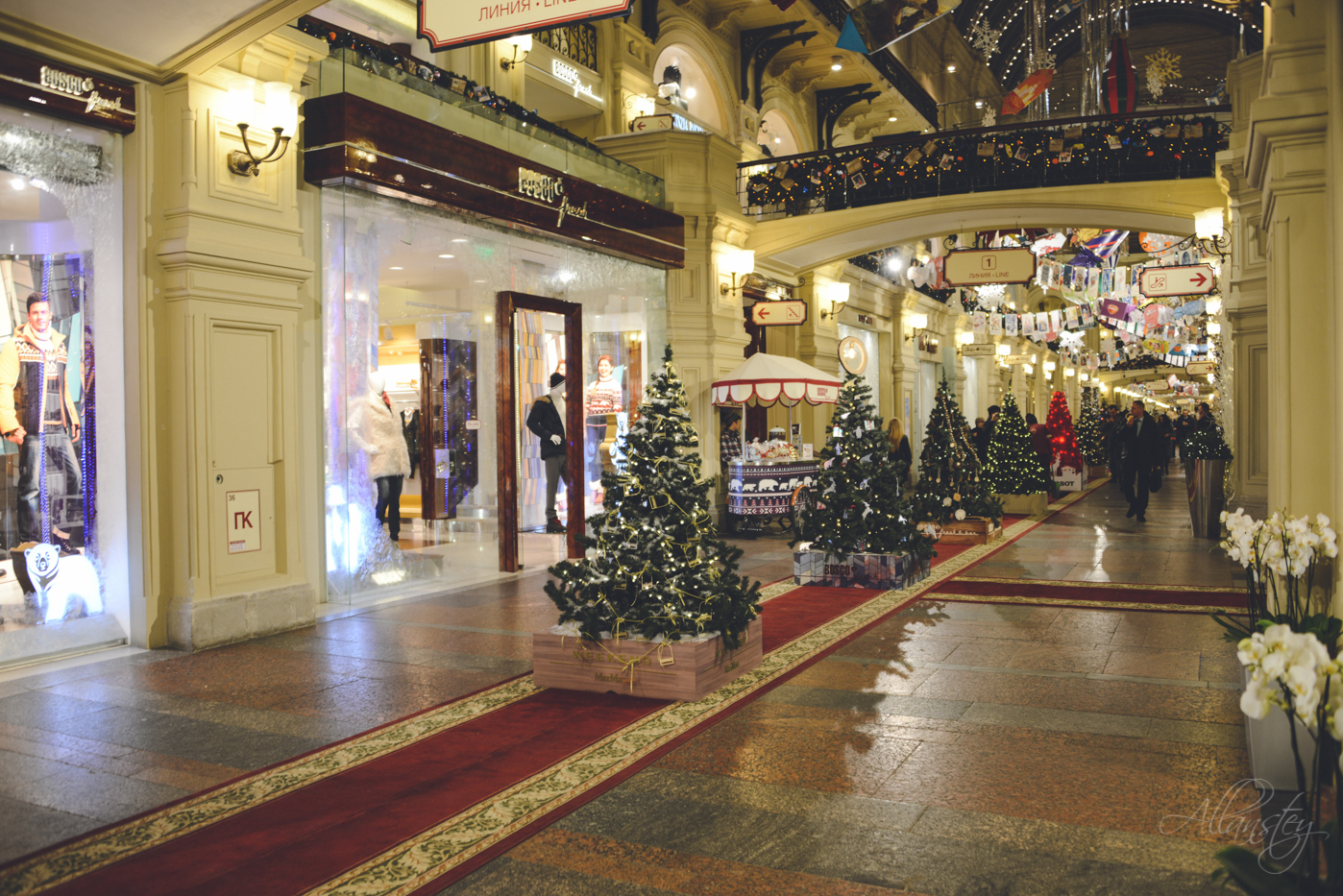 Christmas trees exhibition in Gum, Moscow, Russia.