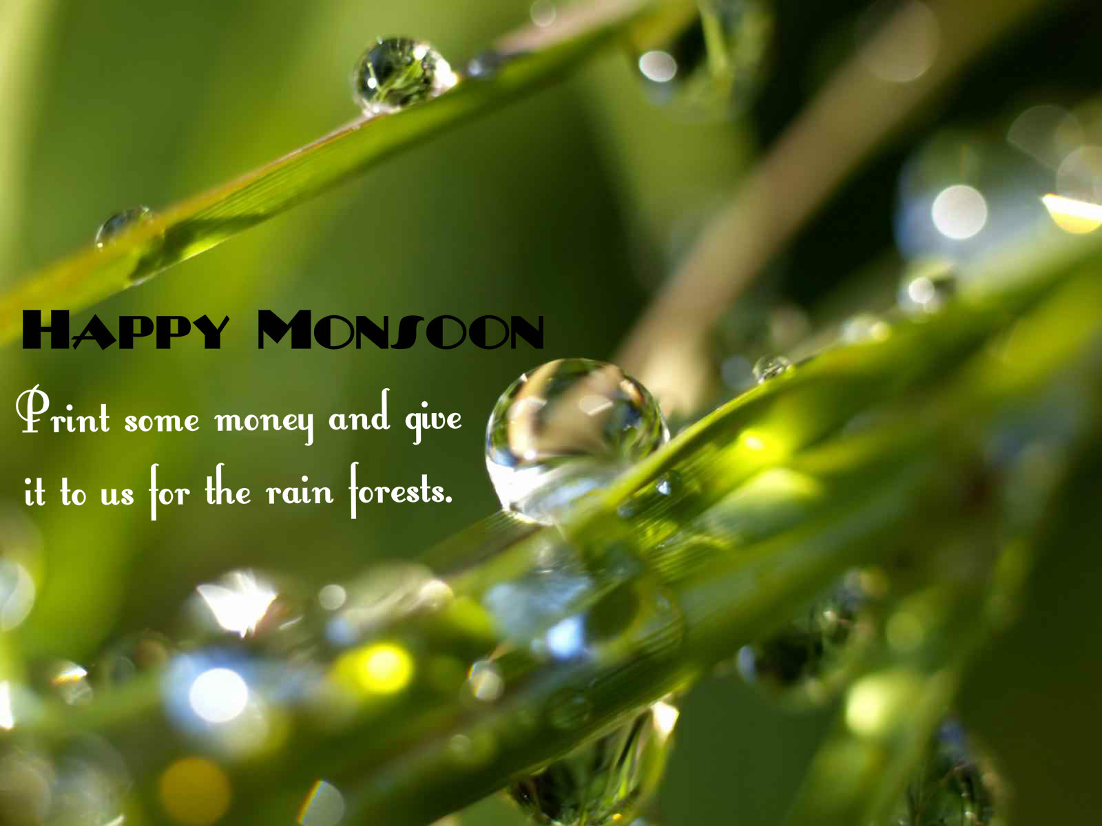 Monsoon Start Now Wishes Wallpaper Images Download Aajkalfun