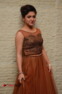 Actress Sarayu Pictures in Long Dress at Nee Jathaleka Audio Release  0034.JPG