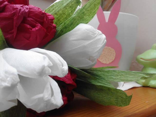 Dawka kultury, kwiaty i koty | tygodnik