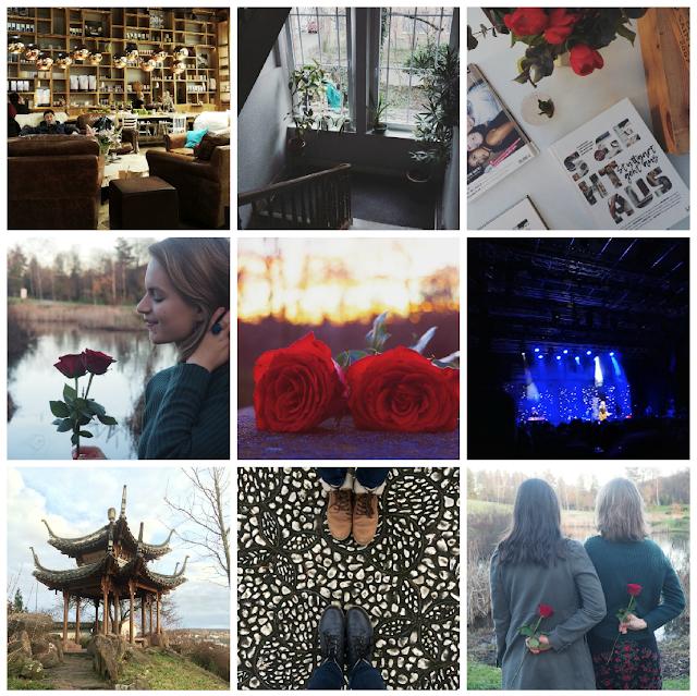 monatsrueckblick-februar-buch-film-erlebt