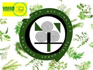 Plantas, plataforma de contenidos de ECO SEO Green Marketing
