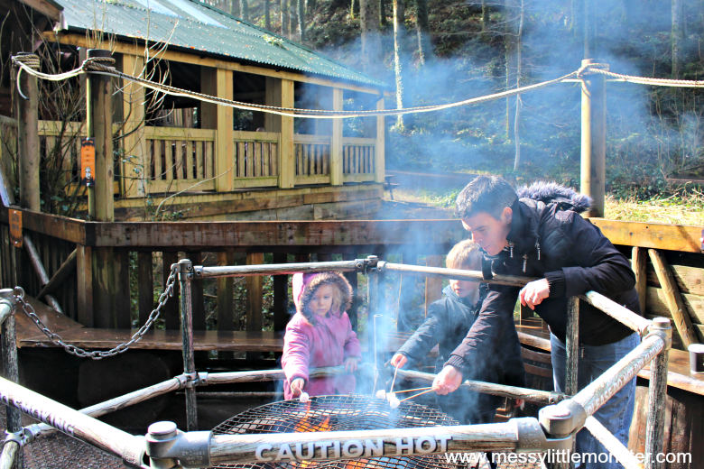 Bluestone Wales Review - toasting marshmallows at camp smokey