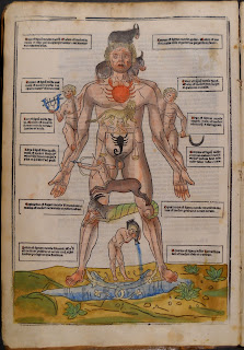 A photograph showing the colored illustration of a Zodiac Man in Ketham's book. A nude man is surrounded and covered by manifestations of astrological signs over the parts of the body they are though to represent. For example a woman representing the sign Virgo is shown over the stomach. There are several small blocks of text surrounding the image.
