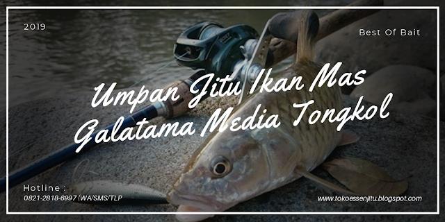 https://tokoessenjitu.blogspot.com/2019/03/umpan-jitu-ikan-mas-galatama-media.html