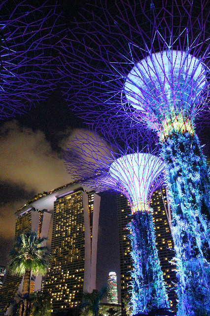 lampu-lampu di garden by the bay