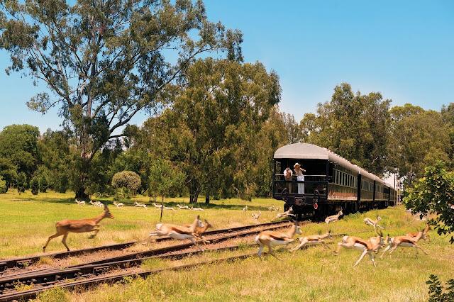 Rovos Rail Afrika, Aussichtsplattform